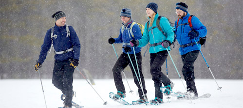 4 Adults laughing and snowshoeing in a field