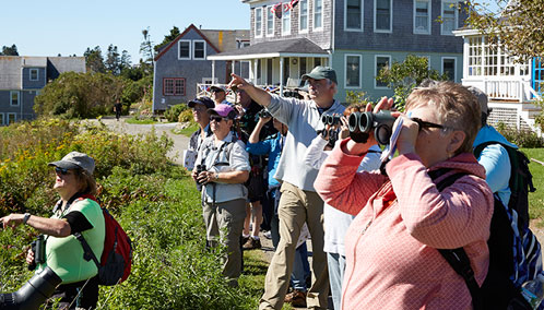 Dr. Jeff Wells leading a group of birdwatchers on Monhegan Island.