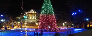 Synchronized lights on L.L.Bean's Freeport campus