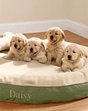 Four puppies on a circular L.L.Bean Dog Bed.