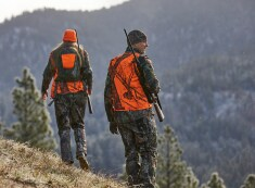 Deer Hunting Essentials Guide