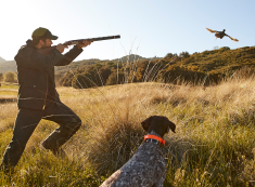 Upland Hunting Essentials Guide