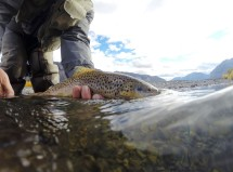 Fly-Fishing Guide