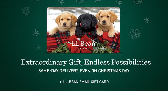 Extraordinary Gift, Endless Possibilities. L.L.Bean Email Gift Card. Same-day delivery, even on Christmas Day.