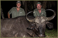 Bill helped fill some depredation tags with this 6x6 bull, while hunting for Elk in Colorado.
