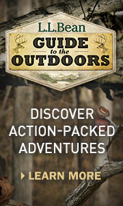 Discover action-packed adventures