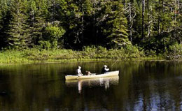 Bird watching from a canoe with Maine Audubon.