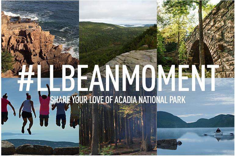 Happy Centennial, Acadia. You've never looked better.