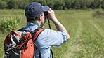 Birding Festival with Maine Audubon